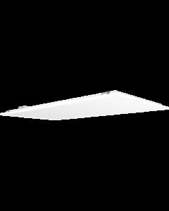RAB Backlit Troffer 2X4 30W 80CRI 5000K 120-277V 0-10V DIM WH