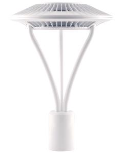 RAB Area Light 78W Warm LED 5T Clear Lens White | BulbsDepot.com