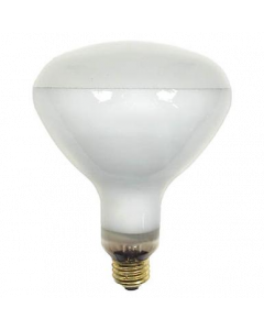 GE 250R40/1/STG PQ6 GE Heat Lamp Saf-T-Gard